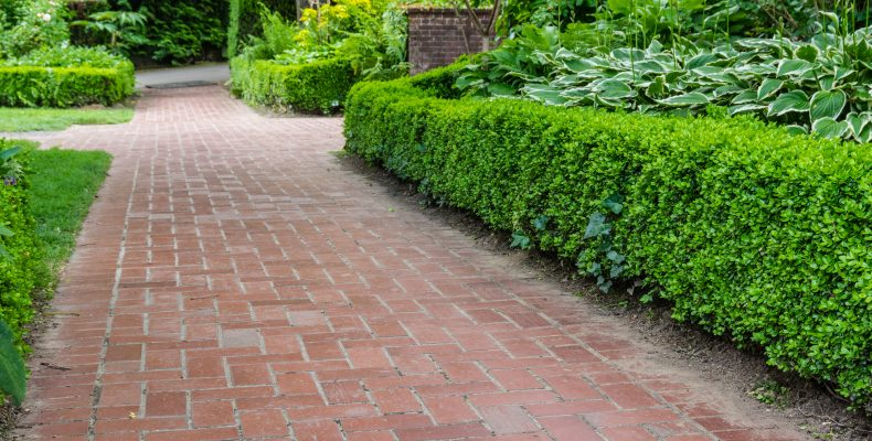 Brick pathways through a garden